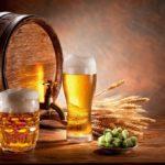 7 мифов о пиве